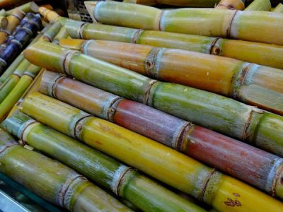 SWAN Systems to manage water and nutrient use in sugarcane and cotton