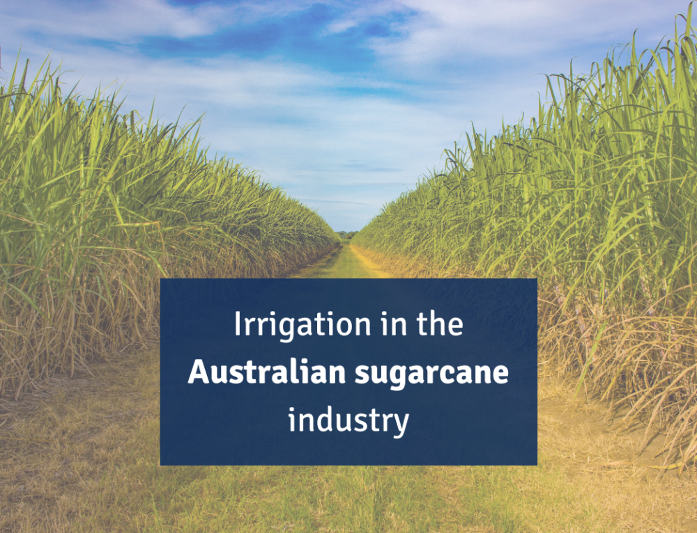 Irrigation in the Australian sugarcane industry