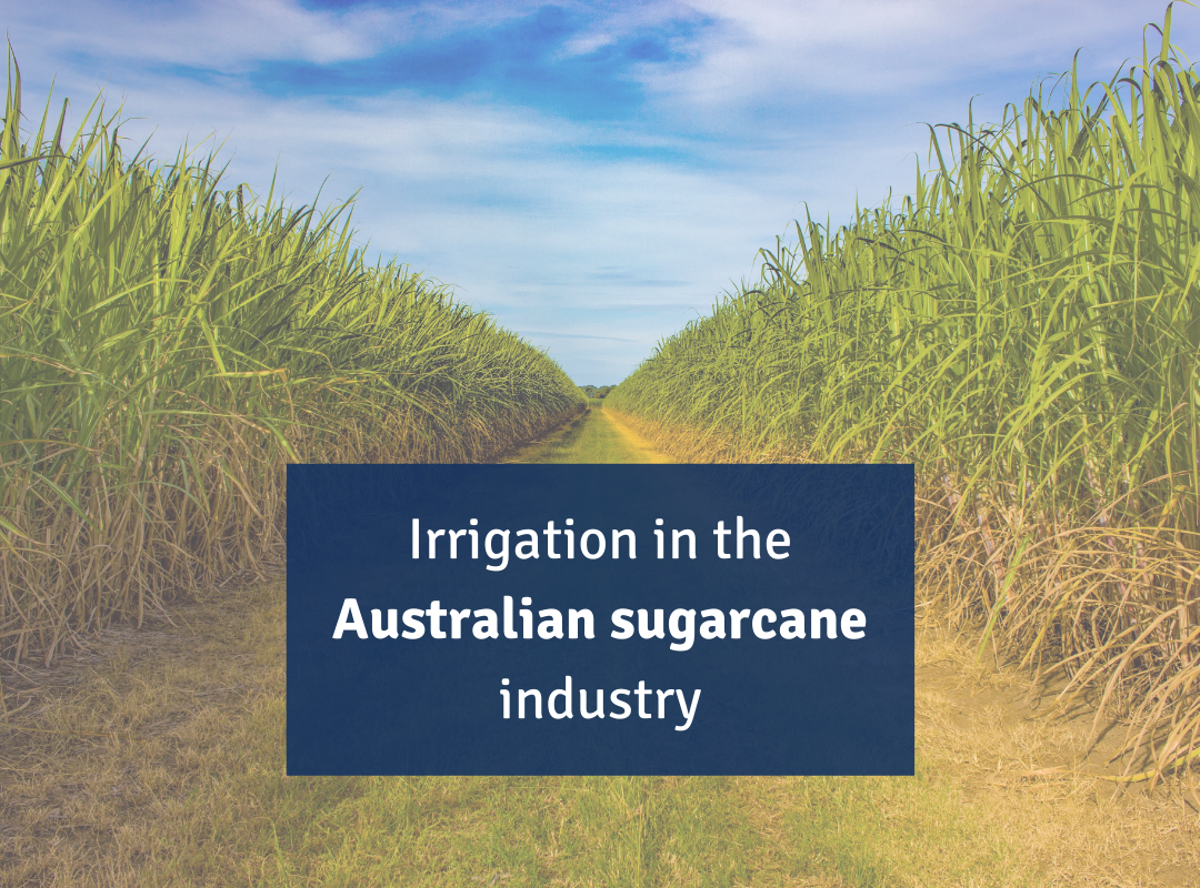 Irrigation Sugarcane SWAN Systems