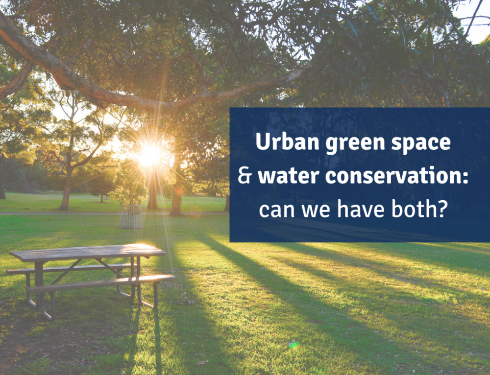 Urban Green Space and Water Conservation: Can We Have Both?
