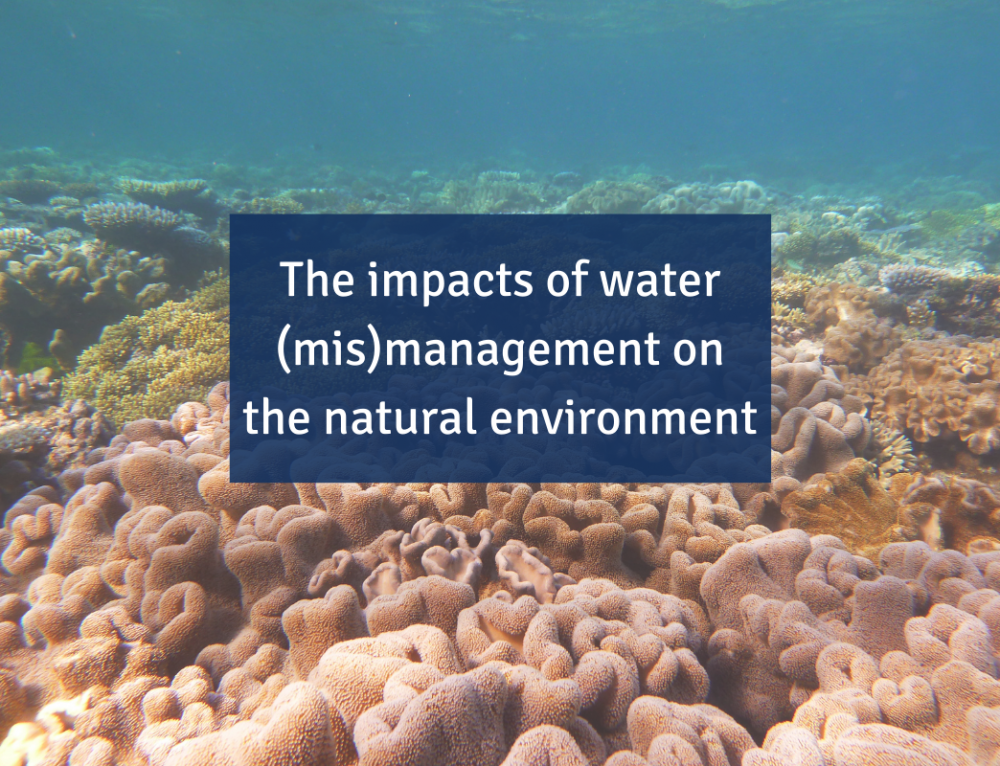 The impacts of water (mis)management on the natural environment