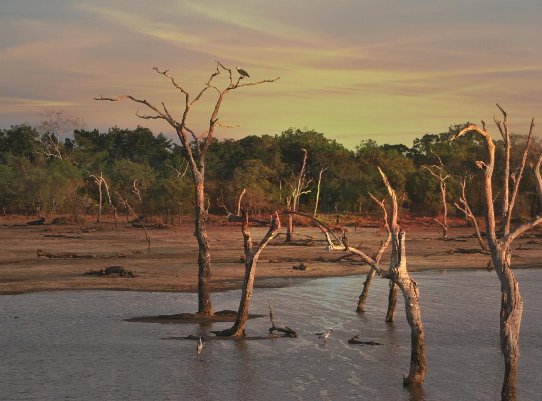 natural environment water